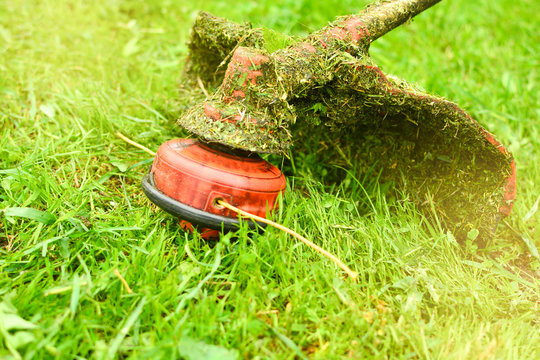 Trimmer close up mow the grass with a lawnmower. Gardening with a brush cutter Close-up. Lawn care with brush cutters
