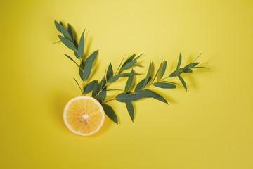 Нalf lemon and eucalyptus branch on bright yellow background