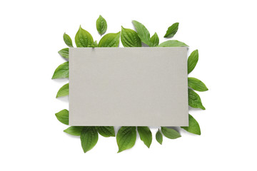 Blank card and spring green leaves on white background, top view. Space for text Wall mural