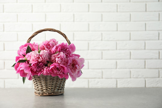 Wicker basket with fragrant peonies on table against brick wall, space for text. Beautiful spring flowers