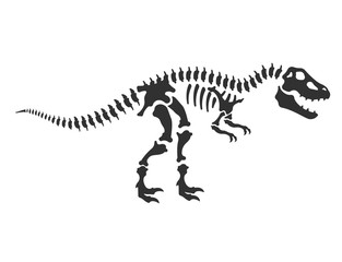 Tyrannosaurus, T-Rex, dinosaur skeleton. reptile bones, Isolated vector illustration