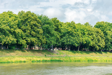 linden alley on the embankment of the river uzh. beautiful summer scenery. popular travel destination of ukraine.