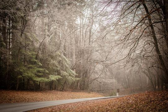 winter in asheville