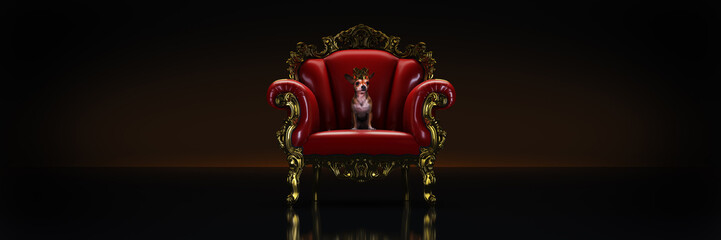 Dog with crown in a chair. 3d rendering
