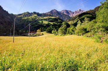 Paesaggio Tirolese
