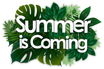Summer is coming word and green tropical's leaves background