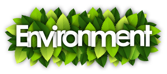 environment words and green leaves background