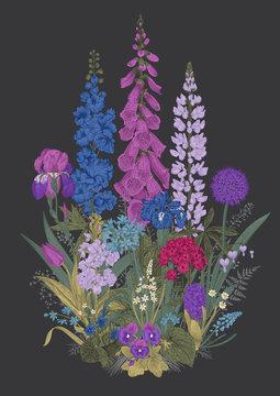 Lovely Garden. Flowerbed. Vintage illustration. Spring and summer garden flowers. Dark color