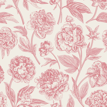 Seamless pattern. Classic peonies. Vector botanical illustration. Coral color