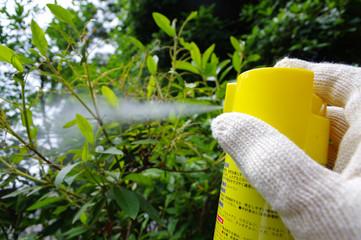 殺虫剤で害虫駆除
