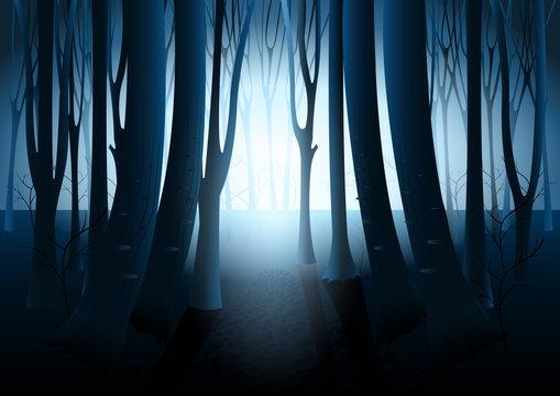 Dark mysterious forest