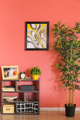 Shelving unit with decor and green plant near color wall