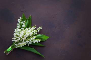 Poster de jardin Muguet de mai lily of the valley