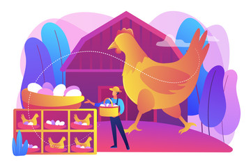 Poultry business, farming industry modern technology. Free run chicken and eggs, cage-free eggs, choose eggs from happy chickens concept. Bright vibrant violet vector isolated illustration Fotomurales
