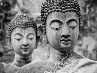 Obraz Dwa stare posągi Buddy w zrujnowanej starożytnej świątyni w Ayutthaya - fototapety do salonu