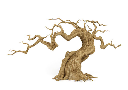 Dead withered tree isolated on white background, decorative object for Halloween scene, 3D rendering