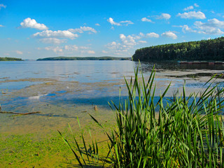 Wall Mural - Summer idyllic landscape with lake and sky. Bright day view with blue sky and white clouds and reflection in calm water surface. Lake Chebarkul, South Ural, Russia.