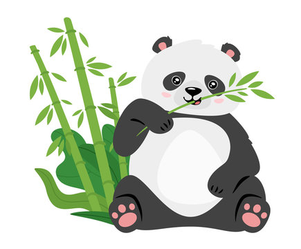 Cute panda eating bamboo stems flat vector illustration