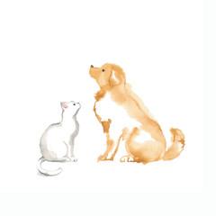 ゴールデンレトリバーと白猫の素材