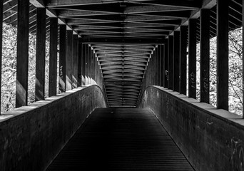 Fotobehang Brug wooden bridge in Frankfurt city forest, hesse, germany