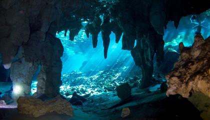Underwater Gran Cenote Yucatan Mexico Wall mural