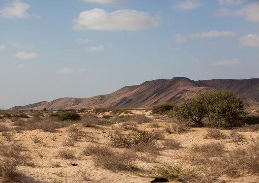 Hill in an arid landscape, Woqooyi Galbeed region, Hargeisa, Somaliland
