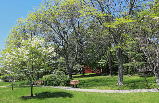 Small neighborhood park in residential area of Quincy, Massachusetts, at springtime.