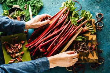cropped shot of person holding fresh ripe healthy rhubarb stalks