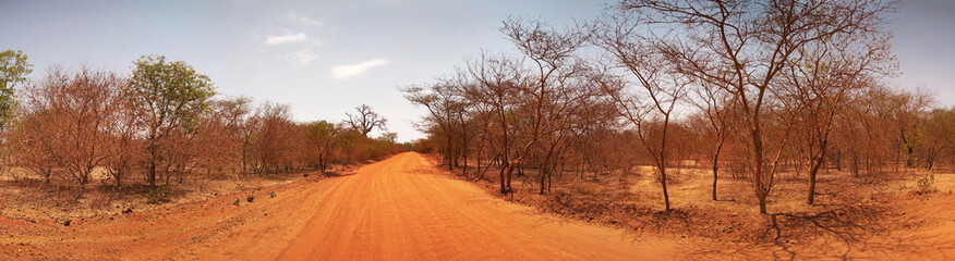 African road in Senegal. Panorama.