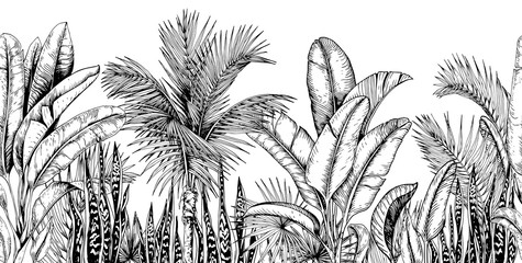 Seamless horizontal line with tropical palm trees, banana leaves and snake plants. Black and white. Hand drawn vector illustration. Wall mural