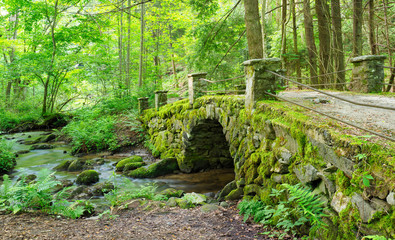 Moss Covered Antique Stone Bridge Near the Little River, The Great Smokies Mountains National Park