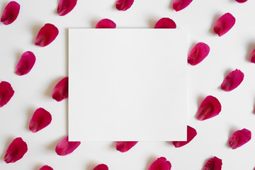 Red juicy peony petals in rows on white background with white card. Copy space, flat lay