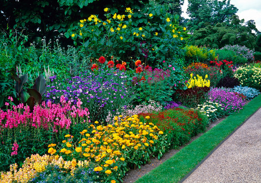 Blocks of colour with mixed planting in a long sunny border in a country garden