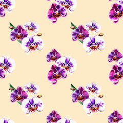 Seamless pattern from orchid flowers. Watercolor painting. Exotic plant. Floral print. Botanical composition. Wedding and birthday. Greeting card. Flower painted background. Hand drawn illustration.