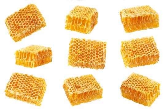 Yellow Honeycomb slice collection