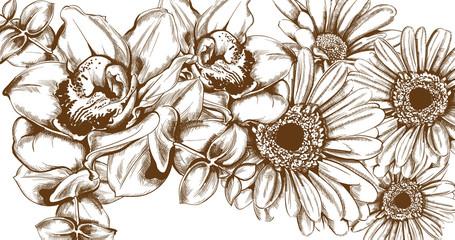 Vintage sunflower card Vector line art. Boho style posters