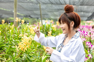 Scientists smile holding a computer in an orchid garden. Botanical research researchers, orchids, wearing a scientist's shirt and her hands holding a science experiment tube  Wall mural