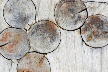 Wooden texture with knots