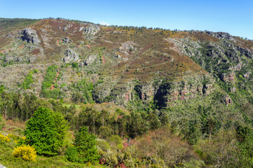 Tectonic folds in the slate cliffs of the geopark O Courel