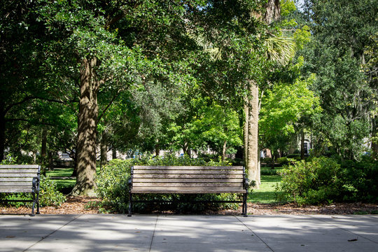 Front of park bench