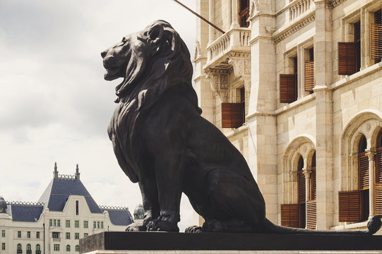 Lion statues, Parliament in Budapest, Hungary