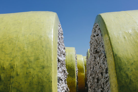 Harvested cotton bales wrapped in yellow plastic vinyl ,Cotton Bales