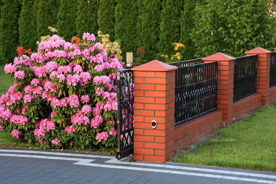 Nowoczesne ogrodzenie i kwitnące drzewa wokół domu jednorodzinnego chodnik, droga.