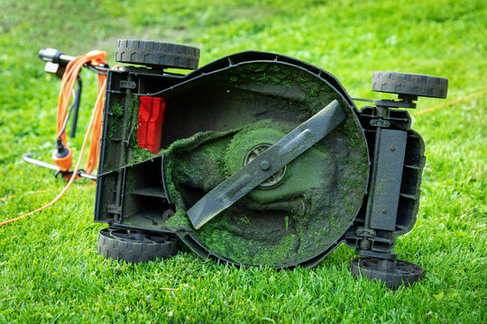 dirty electric lawn mower in green grass at home backyard