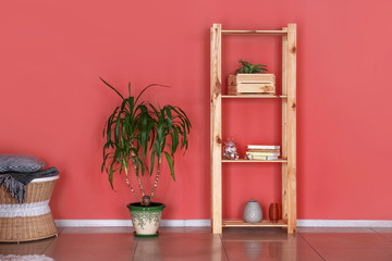 Wooden rack with decor and green plant in pot near color wall