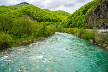 Foto auf AluDibond Forest river Montenegro, Azure waters of moraca river flowing parallel to the road through green forested moraca canyon nature landscape