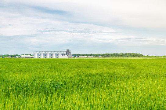 Metal modern elevator in the field of wheat