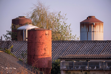 Silos with barns in evening sunlight in spring.