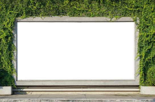 White billboard on spring summer green leaves background