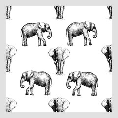Seamless pattern of hand drawn sketch style elephant isolated on white background. Vector illustration.